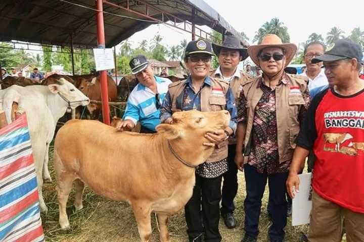 Kabupaten Banggai Menuju Sulawesi Tengah Sejuta Sapi