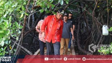Photo of Bupati Banggai Gelar Kunjungan Kerja ke Obyek Wisata Mangrove di Kecamatan Mantoh