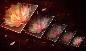 Foto Aplikasi online untuk mengubah ukuran gambar. Ilustrasi. Foto : Adobe