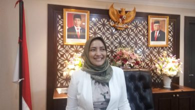 Photo of Anggota DPR RI Ini Ajak Generasi Muda Turun ke Sawah
