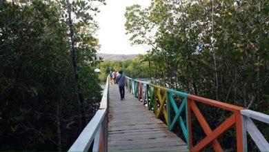 Photo of Mangrove Togong Lanto Salah Satu Objek Wisata Terbaik di Kecamatan Balantak
