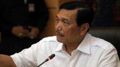 Photo of Pernyataan Luhut Soal Pertamina Sumber Kekacauan Bertolak Belakang