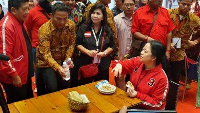 Photo of Rakernas I PDIP: Puan Ingin Indonesia Jadi Raja Rempah Dunia