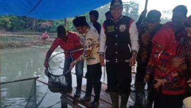 Photo of Resmikan Wisata Ikan Air Tawar di Desa Koyoan, Bupati Herwin Tinjau Pembangkit Listrik Tenaga Air