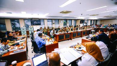 Photo of Sejahterakan Daerah, Komite II DPD RI Jalin Kerja Sama dengan Kementerian LHK