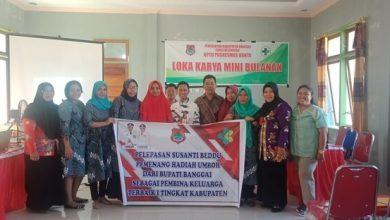 Photo of Hadiri Lokakarya di Kecamatan Toili, dr. Anang Wakili Bupati Banggai Beri Reward Kepada Petugas Kesehatan