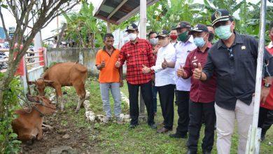 Photo of Bupati Banggai Lakukan Monitoring Langsung Penyaluran BLT Untuk Kelompok Tani dan Ternak Desa Hunduhon