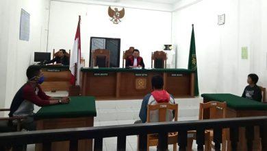 Photo of Angkut Cap Tikus, Polsek Bunta Sidangkan IRT Asal Batui