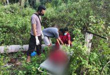 Photo of Polisi Evakuasi Warga Tewas Tertimpa Pohon Kelapa di Baulemo